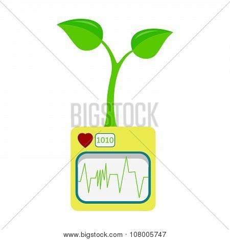 Heartbeat And Seedling
