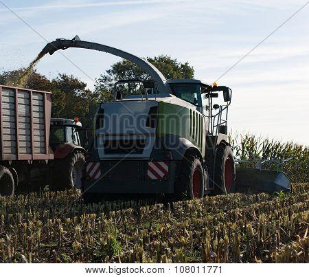 Corn crop biogas plant