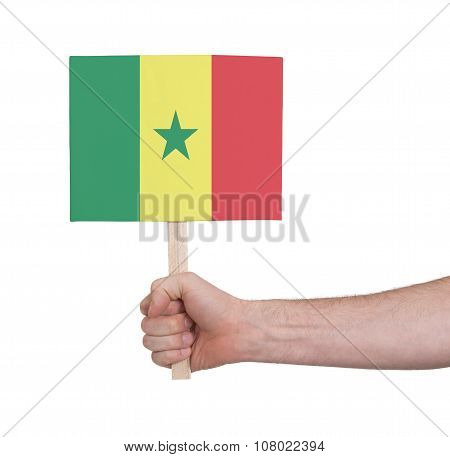 Hand Holding Small Card - Flag Of Senegal