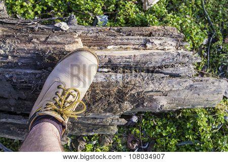 Hiker's Boot