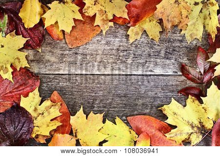 Rustic Autumn Leaves Background