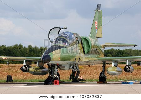Slovak L-39 Airplane