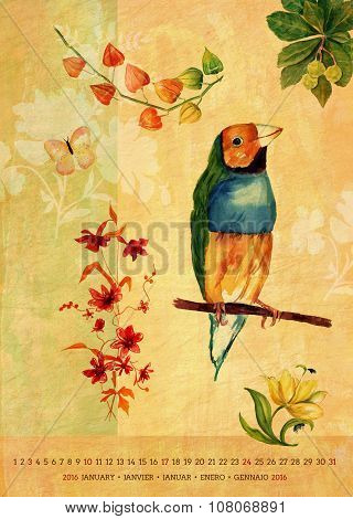 Vintage 2016 Wall Calendar With Watercolor Birds And Flowers; January