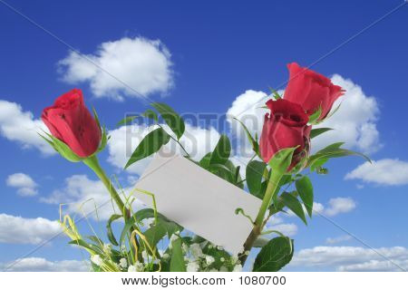 Heavenly Roses With Blank Note
