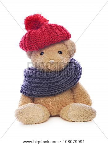 Teddy bear on white.