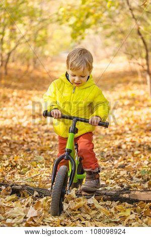 Cute little boy riding learner bike