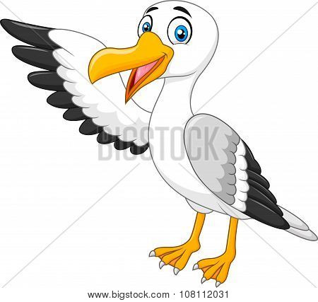 Cartoon seagull presenting isolated on white background