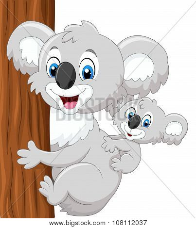 Cartoon baby koala on mother's back embracing tree