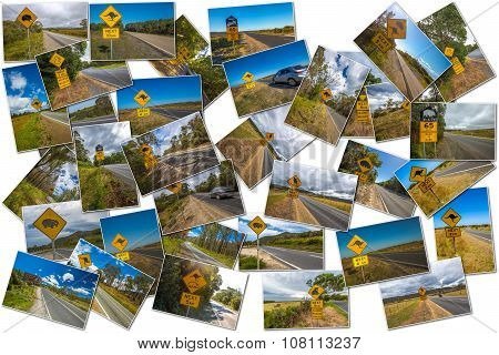 Australian road signs collage