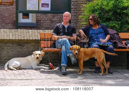Man And Woman Resting On The Bench With Their Dogs In Zandvoort, The Netherlands.