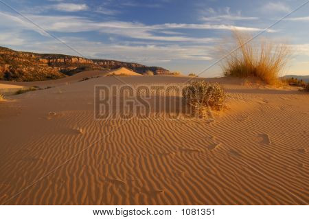 Coral Pink Sand Dunes And Ripples