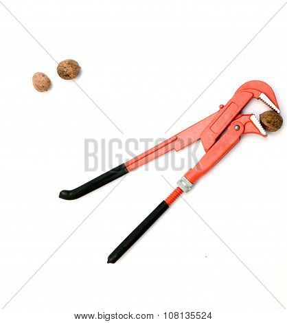 New Orange Pliers And Walnuts