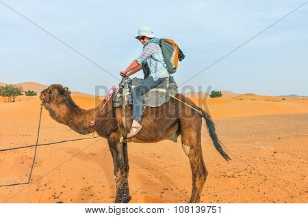 MERZOUGA, MOROCCO, APRIL 13, 2015: young tourist sits on camel, ready for a tour  into the sand dunes of Erg Chebbi