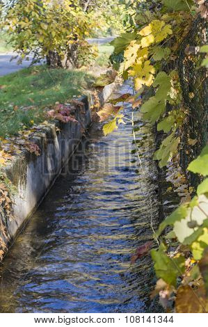Ditch In Autumn