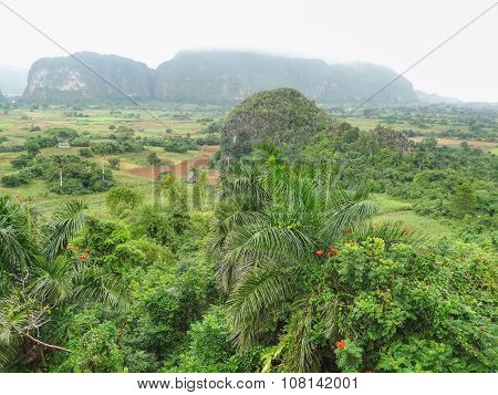 Around Vinales Valley In Cuba