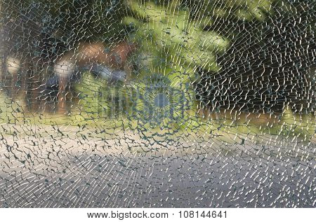 Broken Window With A Bullet Hole In The Middle