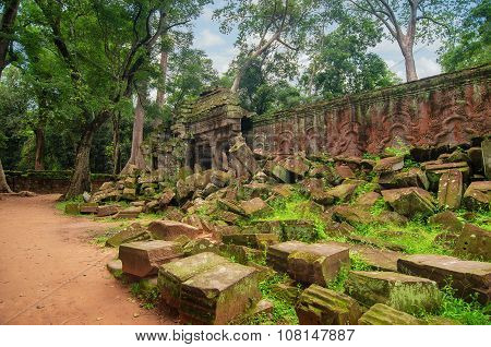 Ancient Stones And The Wall, The Ravages Of Time And Nature Of The Jungle.