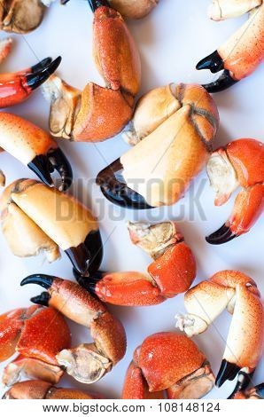 Boiled Crab Claw On grey Background