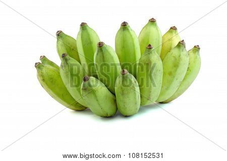 Cultivate Green Banana Isolate White Background