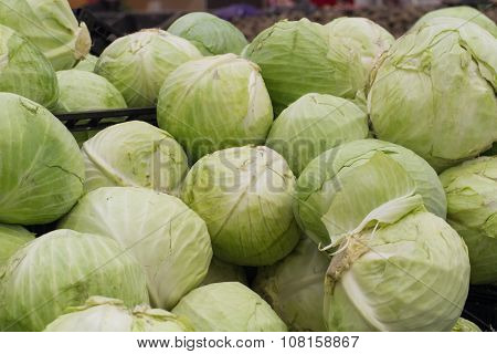 Cabbage On Shelf In Store