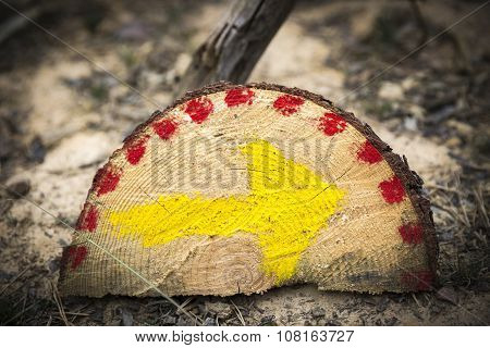 yellow arrow painted in a wooden trunk on the way to Santiago in the countryside