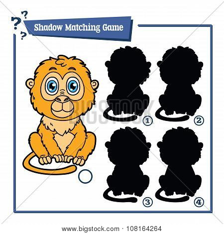 funny shadow tamarin game.