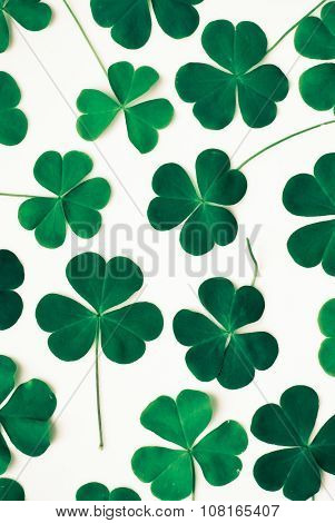 Bear Clover Leaf Green, Background