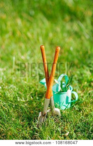 time for garden now, decorative small gardening tools and snowdrops  on grass