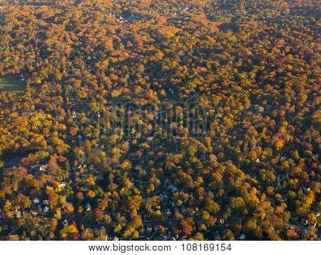aerial view of spectacular autumn colors in New Jersey