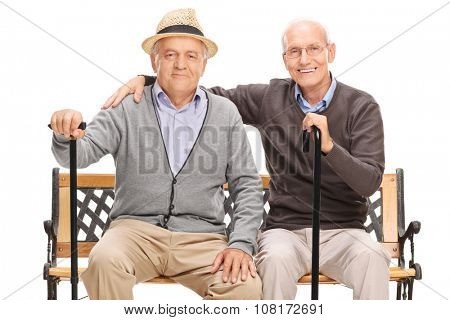Studio shot of a two old friends posing together seated on a wooden bench isolated on white background