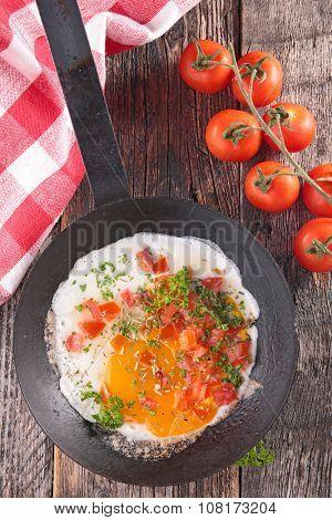 casserole with egg,cream and tomato