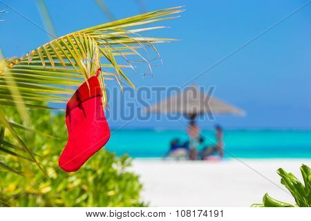 Red Santa Christmas stocking between palm trees on white beach