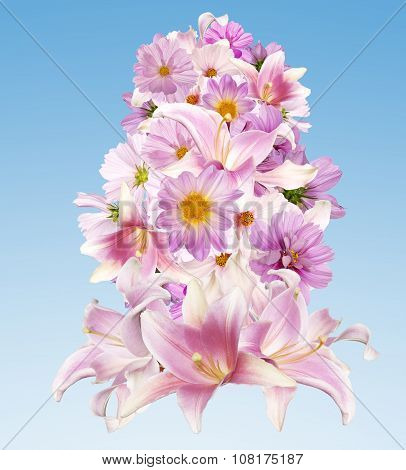 Assorted Beautiful Pink Flower.lily,orchid,chamomile And Other Flowers