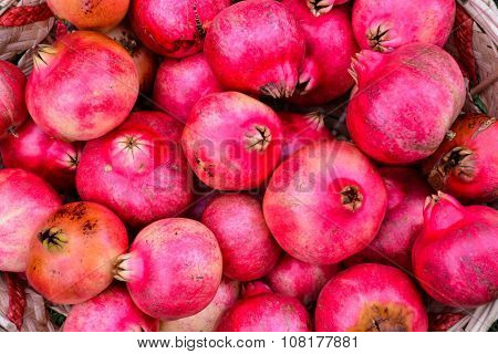 Exotic Fruit Red Pomegranate