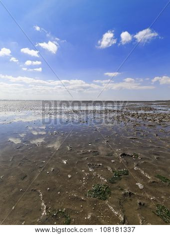 Low Tide In Watts On The North Sea