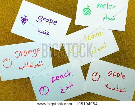 Language Flash Cards; Arabic