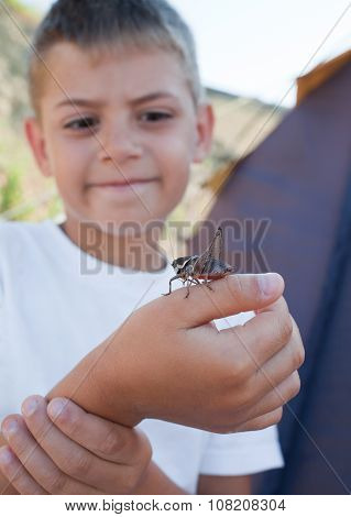 Grasshopper Sits On  Boy's Arm