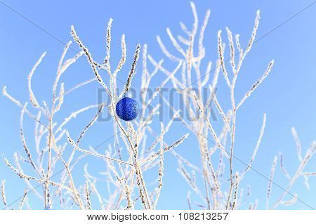 single shiny Christmas ball hanging on snowy branches