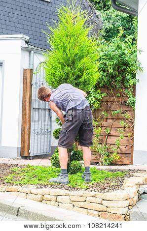 Gardener Pruning Agent