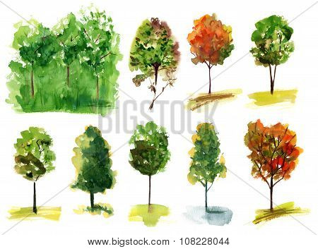 A set of various watercolour trees on white background