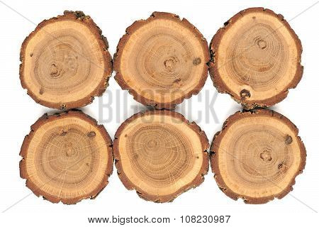 Six Oak Split With Growth Rings And Bark