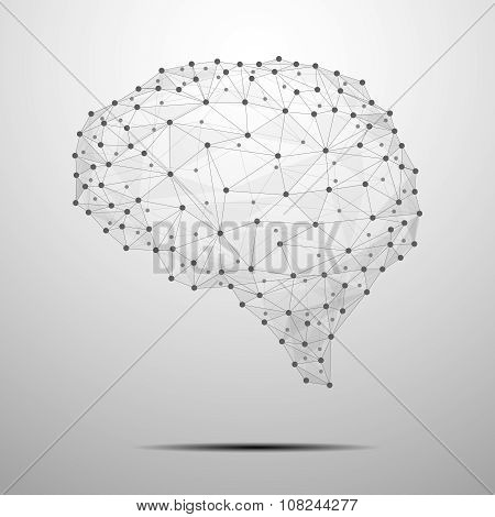 The Brain polygonal