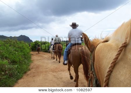 Family On A Trail On Horseback