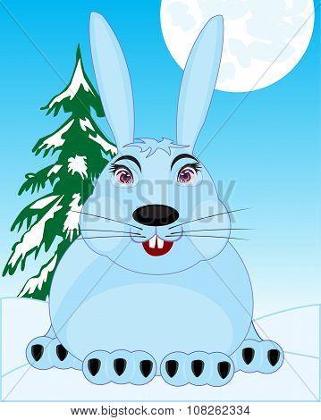 Wildlife Hare In Snow