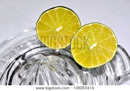 Lime citrus fruit with juicer