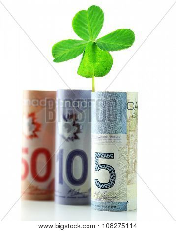 Clover leaf and Canadian dollars on white surface