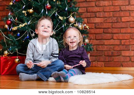 Brother And Sister Near Christmas Tree