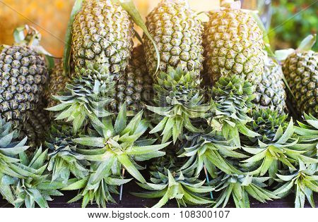 Pineapple Tropical Fruit On The Market