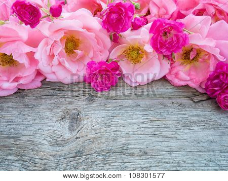 Pink Curly Roses And Small Vibrant Pink Roses On The Wooden Board
