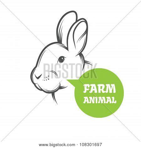 Vector Rabbit Farm